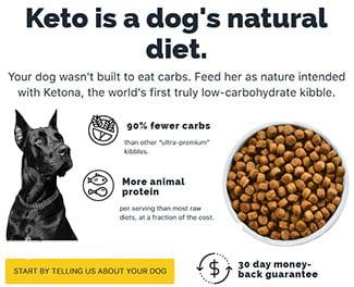 Healthy Dog Diet