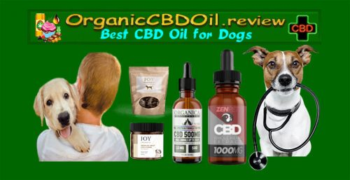 best cbd for dogs